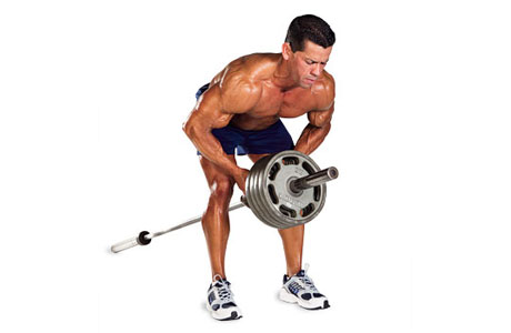 Bent Over T-Bar Rows - Starting Position