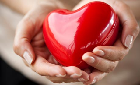 Heart Disease Cardiac Disease - Heart in Hands