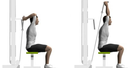 Seated Cable Tricep Extension   Image  bodytrainer tvSeated Tricep Extension