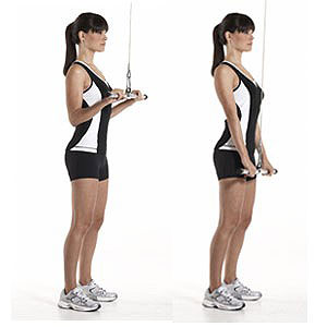 Standing Cable Tricep Extension