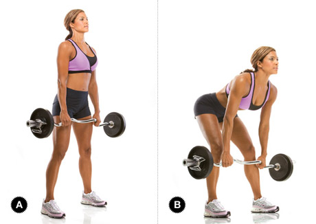 Stiff Legged Deadlift - Leg Exercises